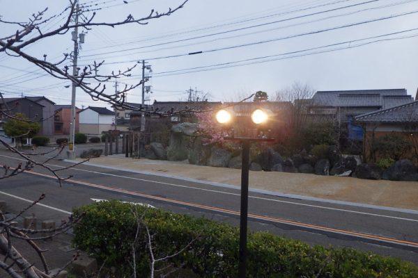 展望台桜ライトアップ照明